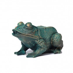 Frog, fountain for your...